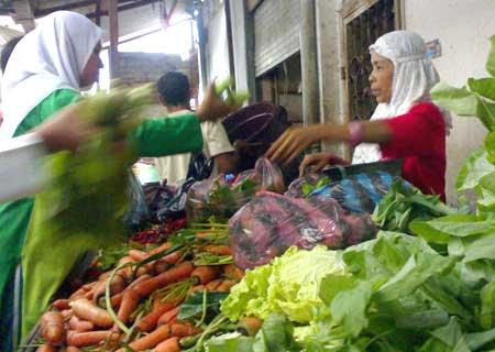 Foto Seputar Aceh/Pozan Matang