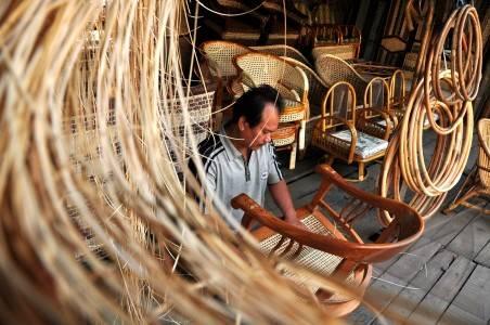 Rotan dari Simeulue Dipasarkan ke Pulau Jawa