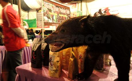 aceh coffee food festival 2012 ix