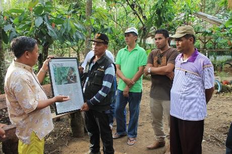 Badan Ketahanan Pangan Kunjungi Kebun Kakao di Aceh Tenggara