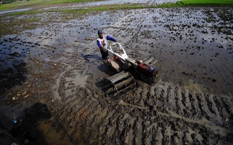 Dinas Pertanian Aceh Bagikan 1.367 Traktor untuk Petani