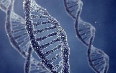 Penyebab Penyakit Alzheimer Kini Bisa Diketahui Lewat Tes DNA
