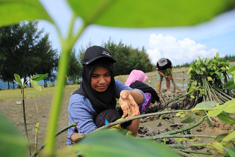 Para relawan EH sedang menyortir bibit mangrove (Foto M Iqbal/SeputarAceh.com)